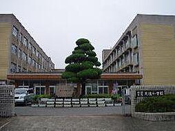 小学校姫路市立...