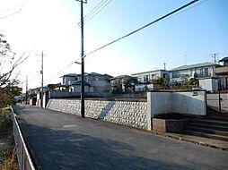 南側道路と敷地