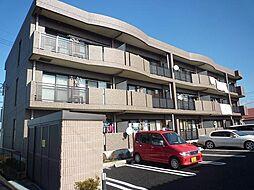 千葉県柏市南増尾4丁目の賃貸マンションの外観