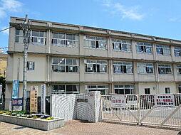 平野小学校(1...