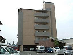 大阪府東大阪市川田1丁目の賃貸マンションの外観