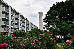 富士見町住宅28号棟