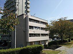 山栄ビル[305号室]の外観