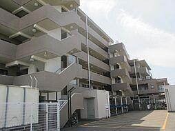 シティ武蔵藤沢