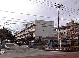 太平中学校(約...