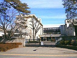 由野台中学校 ...
