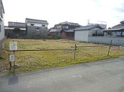 八幡市岩田松原