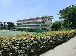 市立本太中学校...