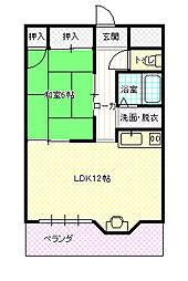 新井駅 4.9万円