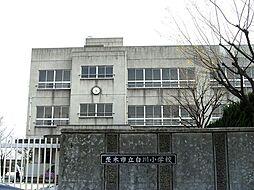 白川小学校