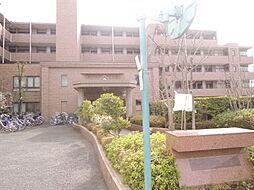 コート武蔵小金井