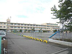 桜井小学校(2...