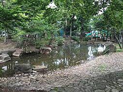 駒沢緑泉公園も...