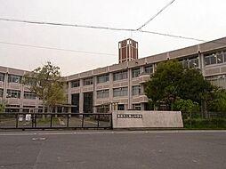 葉山中学校 約...