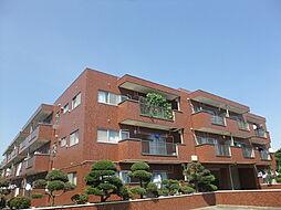 東京都板橋区向原の賃貸マンションの外観