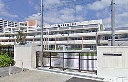 大島南央小学校 650m
