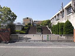 真美ヶ丘中学校