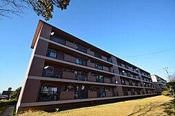 鍋屋上野住宅5号棟[4階]の外観
