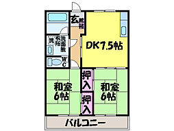 愛媛県松山市桑原3丁目の賃貸マンションの間取り