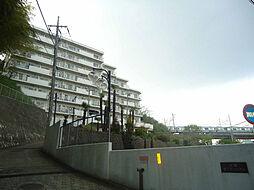 中銀杉田マンシオン