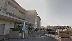 学区:坂本中学...