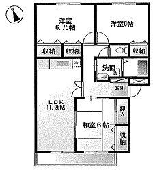 アルバンヒル鎌ヶ谷[206号室]の間取り
