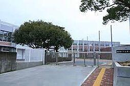学区:第一中学...