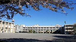 千歳台中学校