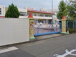 幼稚園・保育園...