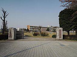 学区 石塚小学...