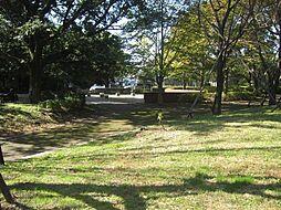 公園 約300...