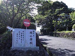 町立 綾小学校...