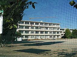 宇留生小学校