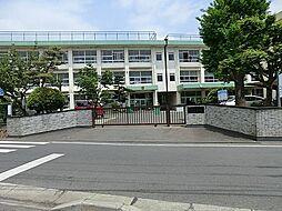 平塚市立岡崎小...