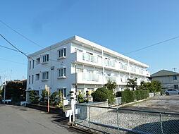 リバーサイド早川[101号室]の外観