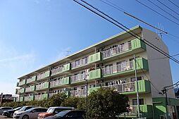 愛知県弥富市前ケ須町東勘助の賃貸マンションの外観