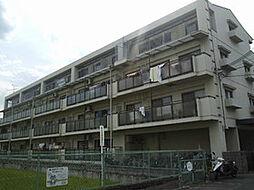 大阪府高槻市川添1丁目の賃貸マンションの外観