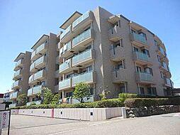 ライオンズマンション茅ヶ崎海岸第二 空室