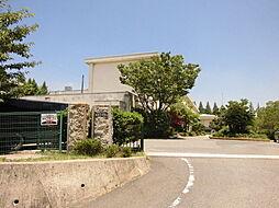 知多市立旭北小学校 徒歩 約27分(約2100m)
