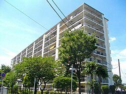 新松戸ハイツ