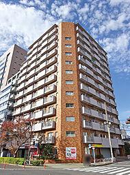 New 〜ハピーハイツニュー亀戸〜 駅徒歩4分・角部屋・ペットOK