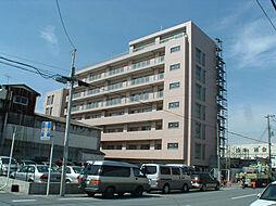 ジュネッタ11[3階]の外観