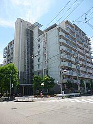 シティーコート千島[4階]の外観