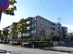 コープ野村緑山ヒルズ参番館4階 鶴川駅バス8分