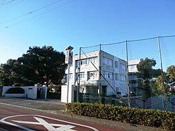 駒寄小学校