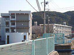浦賀中学校まで...