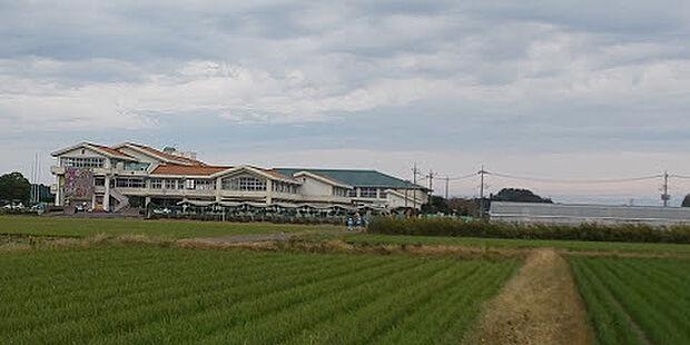 野木町立野木第二中学校まで905m、お子さまが成長しても暮らせます。