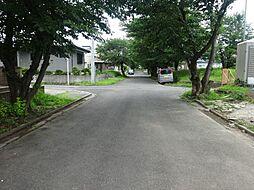 団地内メイン道...