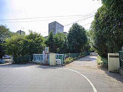 中原小学校まで...