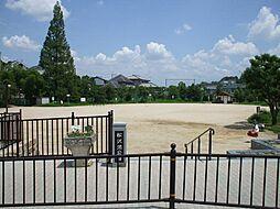 松沢池公園 約...